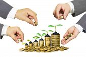 stock photo of golden coin  - Hands of businessmen giving coins to a tree growing on golden coins - JPG
