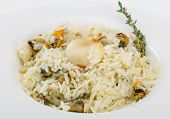 foto of cuttlefish  - Risotto with mussels and cuttlefish served fresh thyme - JPG