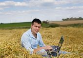 pic of combine  - Young attractive man with laptop sitting on haystack on the farmland combine harvester working in background - JPG