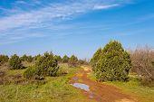 stock photo of crimea  - Beautiful dirt road on mountain of Gasfort morning - JPG