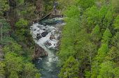 stock photo of rafters  - kayakers and rafters access the Toccoa River on a high release water date - JPG