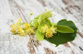 picture of linden-tree  - Linden flowers on a old wooden background - JPG