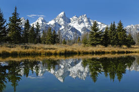 picture of mountain-range  - teton mountain range reflecting in river water with surrounding plants and trees - JPG