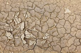 picture of drought  - Cracked earth from the intense heat - JPG