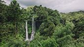 Waterfall In A Tropical Rain Forest poster