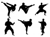 stock photo of taekwondo  - Karate poses - JPG