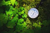 Close Up Handmade Wooden Compass, Tree Shadows On Green Nature Grass Ground. Holiday Adventure In Fo poster