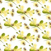 Honey Bee With Linden Blossom Vector. Bee Seamless Pattern Honeycomb Linden Blossom Hexagon Nature F poster