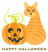 Halloween Orange Tabby Cat Sitting Looking Back With Jack-o-lantern Pumpkin Vector Illustration poster