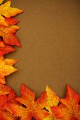stock photo of fall leaves  - Fall leaves on brown background fall border - JPG