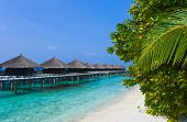 image of kuramathi  - Water bungalows on a tropical island travel background - JPG