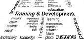 Word Cloud - training and development