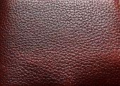 stock photo of crocodilian  - Brown leather - JPG