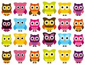 stock photo of owl eyes  - Vector Collection of Cute and Colorful Owls - JPG