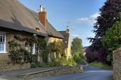 foto of english cottage garden  - Rose covered thatched cottage - JPG