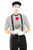 Male mime artist holding a rose flower isolated against white background