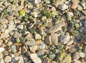 Green Pebble Rocks