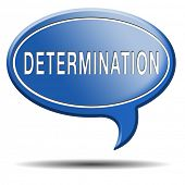 pic of persistence  - determination keep on trying - JPG