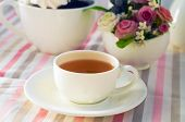 picture of tripe  - cup of tea are standing on the triped cloth - JPG