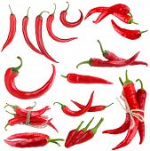 foto of chili peppers  - Red hot chili pepper collage - JPG