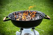 picture of braai  - Grill on the garden - JPG
