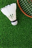 image of shuttlecock  - Close up image of shuttlecock on court - JPG