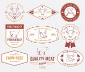 pic of high-quality  - Vector quality beef badges and labels for any use - JPG