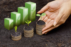 stock photo of sustainable development  - hands holding tress growing on coins in germination sequence  - JPG
