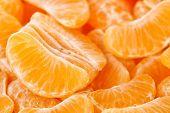 image of mandarin orange  - macro of mandarine orange slices - JPG