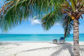 picture of caribbean  - Two beach chairs on tropical caribbean island with palm tree and sail boat in the foreground - JPG