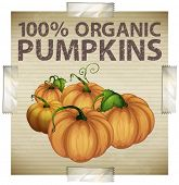 stock photo of non-toxic  - Advertisement for organic pumpkins - JPG