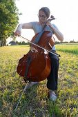 image of cello  - a woman playing the cello on the meadow at sunset - JPG