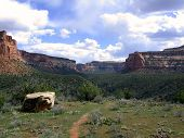 Trail In Colorado National Monument poster