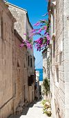 foto of suny  - Narrow street in old medieval town Korcula by suny day - JPG