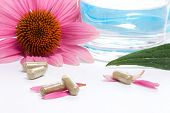Closeup of Echinacea extract pills, fresh Echinacea flowers and glass of water best suited for alter