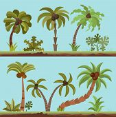 Vector Collection Of Palm Trees, Cartooning Flat Style. Palm Tree Set In Summer Tropical Colors. Gre poster