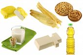 Different Soybean (Soya beans) Products - Yellow Tofu, Tofu Skin, Miso Paste, Soy Milk, Soft Momen (