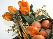 foto of easter basket eggs  - easter basket - JPG