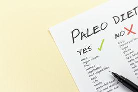 image of food pyramid  - Paleolithic Diet Food List - JPG