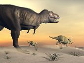 stock photo of tyrannosaurus  - One triceratops escaping from tyrannosaurus dinosaur in desertic landscape by sunset - JPG