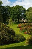 foto of garden eden  - Blossom in Bitts Park with Eden Bridges behind - JPG