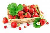 foto of strawberry plant  - Basket fresh strawberry with green leaf and flower - JPG