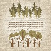 image of coniferous forest  - Illustration of green coniferous and deciduous  forest with a place for your text - JPG