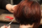 stock photo of hair cutting  - Closeup view of client - JPG