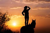 pic of horse girl  - Silhouette of a young girl who is standing on a horse and looks into the distance on the background of the rising sun - JPG