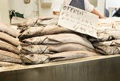 stock photo of hake  - Hakes in a market - JPG