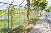 stock photo of barbed wire fence  - long barbed wire fence beside the pathway - JPG