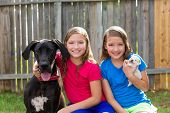 image of great dane  - Twin sisters puppy pet dog and great dane playing together - JPG