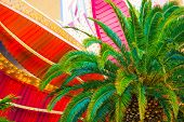 pic of las vegas casino  - Las Vegas Destination Photo Concept with Palm Tree and Casino Sign Elements Closeup - JPG