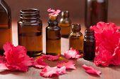 foto of azalea  - essential oil azalea flowers on dark rustic background  - JPG